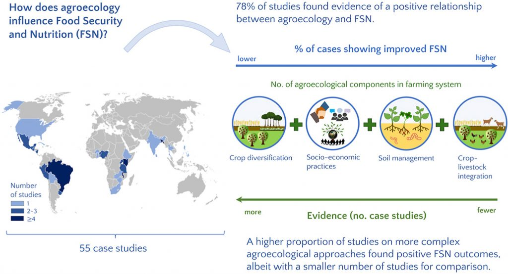 Graphical abstract Can agroecology improve food security and nutrition