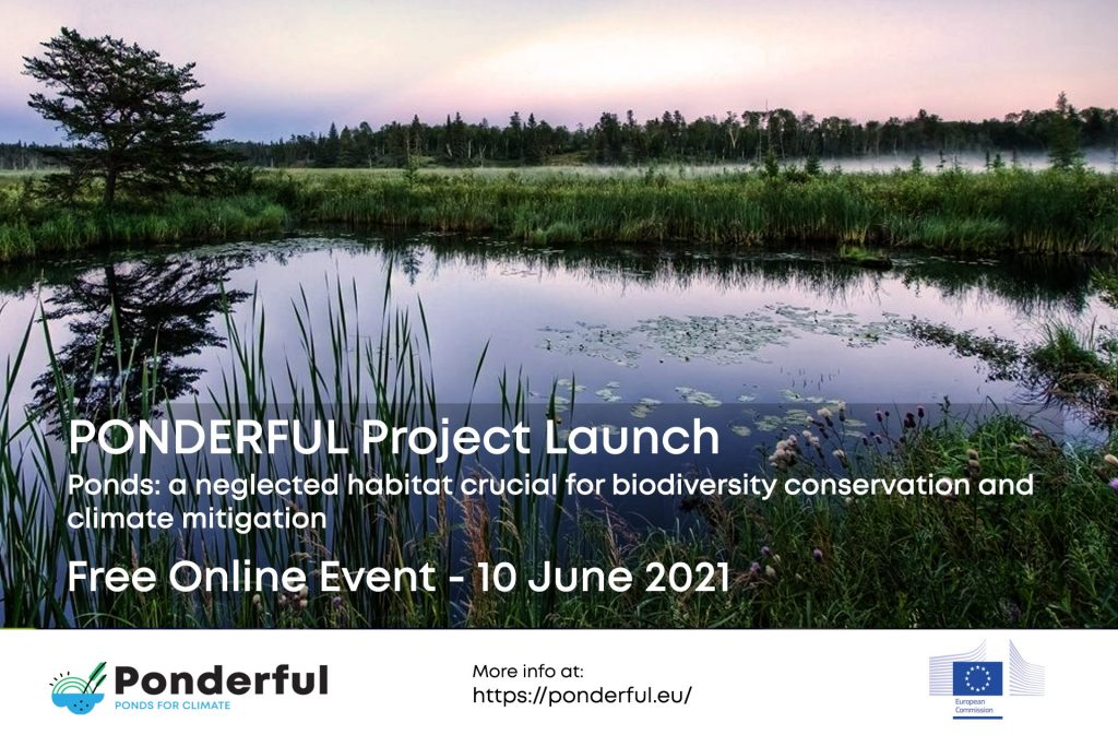 PONDERFUL Launch Event